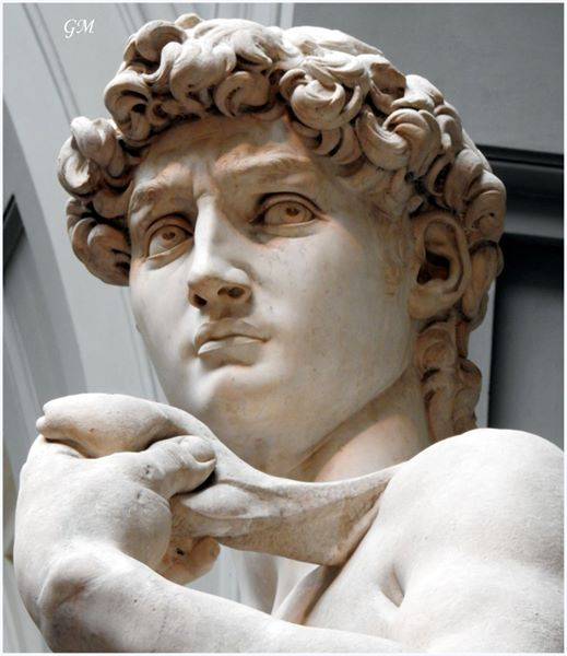 The look of Michelangelo's David